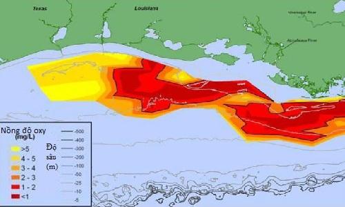 'Vùng chết' ngày càng lan rộng trên vịnh Mexico