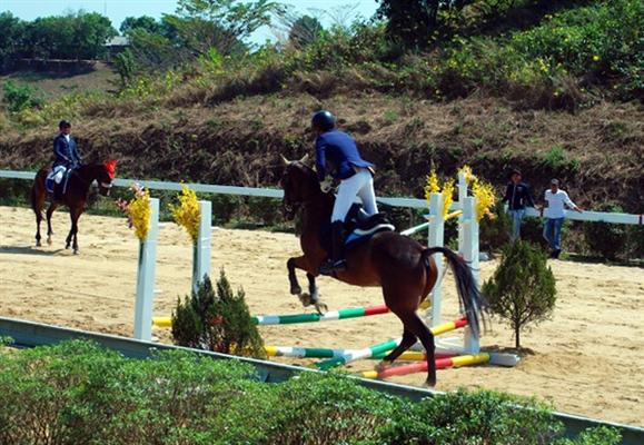 Chính thức ra mắt Câu lạc bộ Cưỡi ngựa Olympic